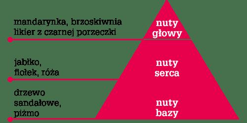 linia liftingująca tołpa holistic